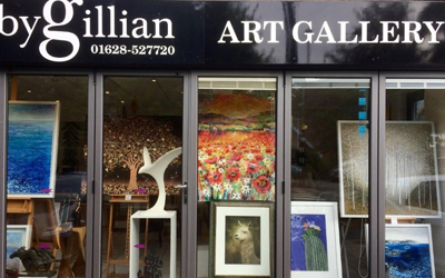 Art Galleries Blenheim - Gillian Gallery Art Salon in Blenheim.